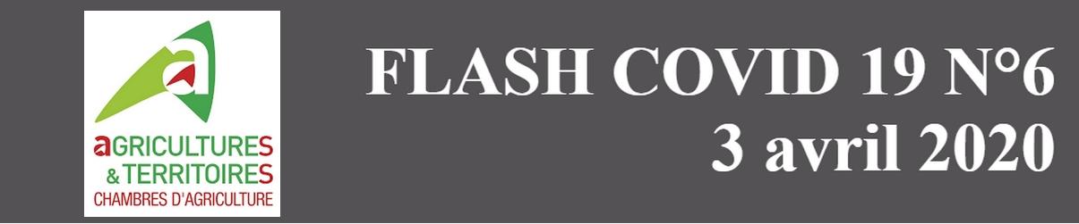 ca-flash_covid-6