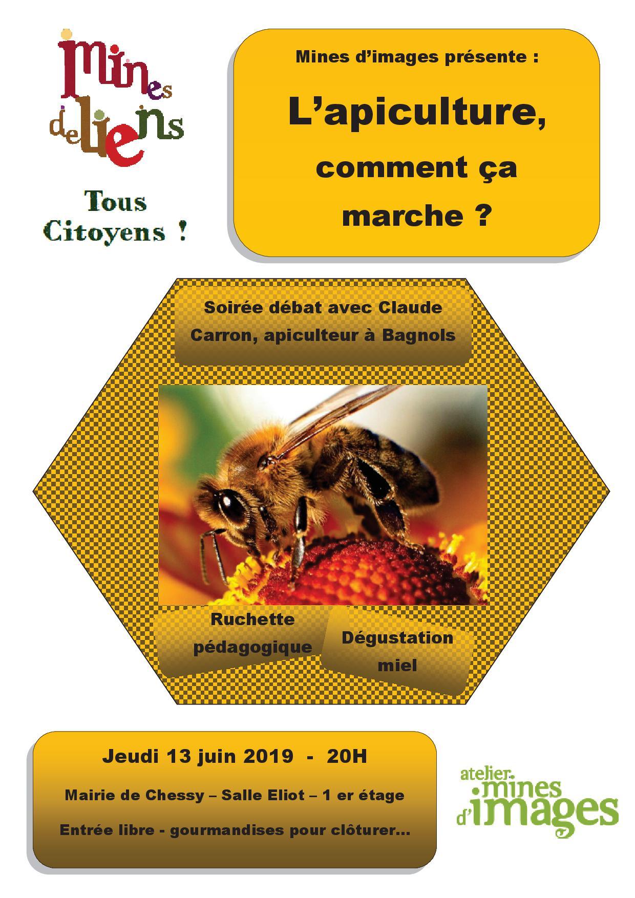 mines_d'images_abeilles_13_juin_20h_chessy