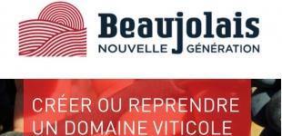 beaujolais_nouvelle Génération-créer